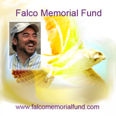 Iniciativa de Damanhur en memoria de Falco
