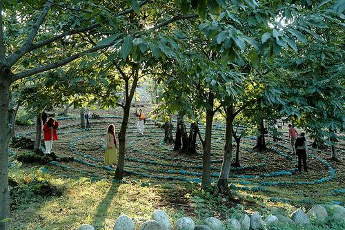 La biodiversidad en los Bosques Sagrados