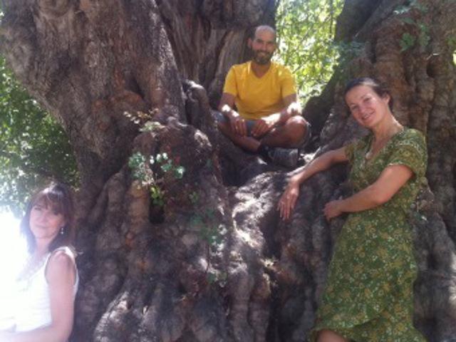 Damanhur España: Celebra el Verano con un Regalo