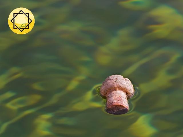 Damanhur News: Como un tapón de corcho en la corriente