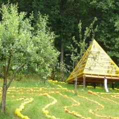 El bosque que se convirtió en un templo