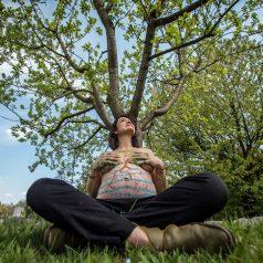 El embarazo en Damanhur y el mundo vegetal