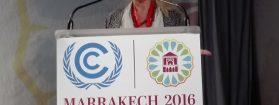 Damanhur en la Conferencia de las Naciones Unidas sobre el Clima